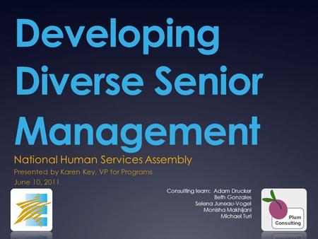 Developing Diverse Senior Management National Human Services Assembly Presented by Karen Key, VP for Programs June 10, 2011 Consulting team: Adam Drucker.