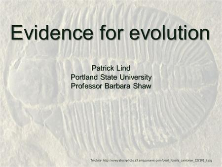 Evidence for evolution Patrick Lind Portland State University Professor Barbara Shaw Trilobite-