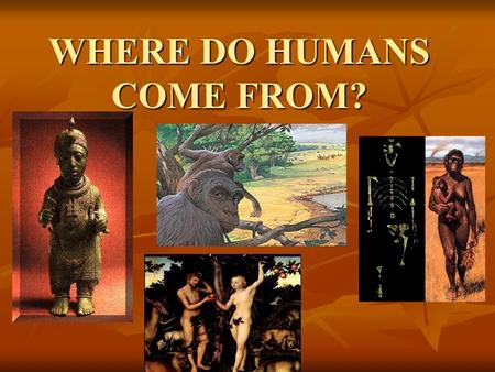 WHERE DO HUMANS COME FROM? Origin Stories Origin Stories are stories that we humans tell ourselves about where our species, and oftentimes our cultures,