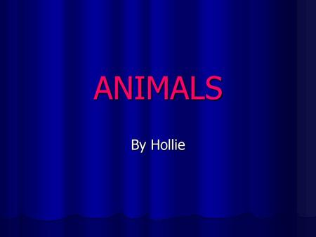 ANIMALS By Hollie. Animals Animals are all around us, whether it's insects, pets or wild animals, it is a fact that where ever you go there are thousands.