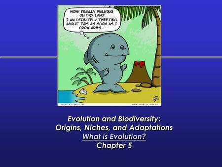 Evolution and Biodiversity: Origins, Niches, and Adaptations
