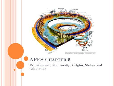 APES C HAPTER 5 Evolution and Biodiversity: Origins, Niches, and Adaptation.