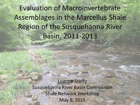 Evaluation of Macroinvertebrate Assemblages in the Marcellus Shale Region of the Susquehanna River Basin, 2011-2013 Luanne Steffy Susquehanna River Basin.