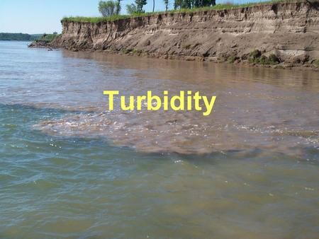 Turbidity. What is Turbidity?  A measure of water clarity  The murkier the water, the higher the turbidity.  Turbidity reduces the transmission of.