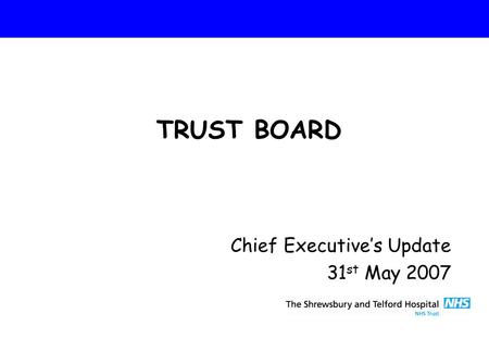 Chief Executive's Update 31 st May 2007 TRUST BOARD.