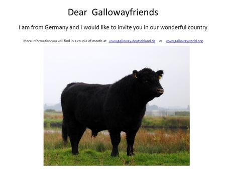 Dear Gallowayfriends I am from Germany and I would like to invite you in our wonderful country More information you will find in a couple of month at www.galloway-deutschland.de.