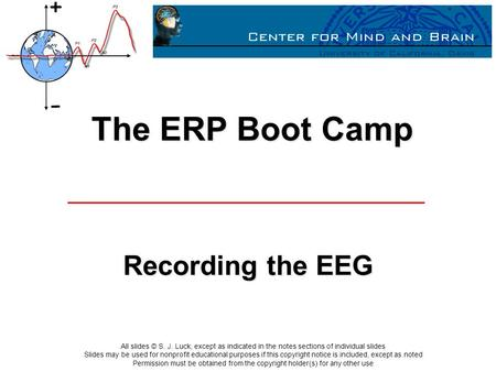 The ERP Boot Camp Recording the EEG.