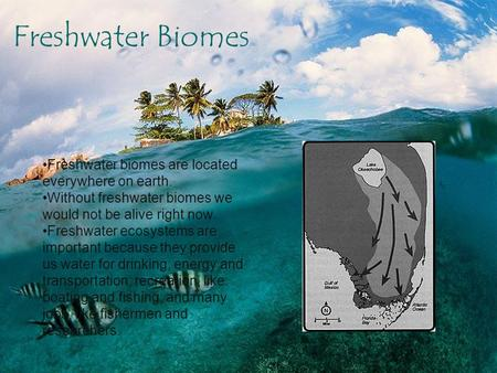 By Marylene Poyhanya Freshwater Biome Freshwater biomes are located everywhere on earth. Without freshwater biomes we would not be alive right now. Freshwater.