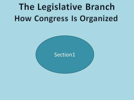 Section1. A Bicameral Legislature The Framers wanted to establish a Congressional voting body, but one of the concerns at the Constitutional Convention.