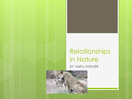 Relationships in Nature BY: Kathy KINSNER. Introduction  Animals depend upon each other in many ways to survive.  What you read might surprise you.