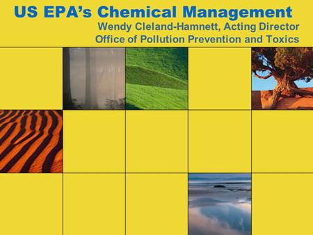 US EPA's Chemical Management Wendy Cleland-Hamnett, Acting Director Office of Pollution Prevention and Toxics.