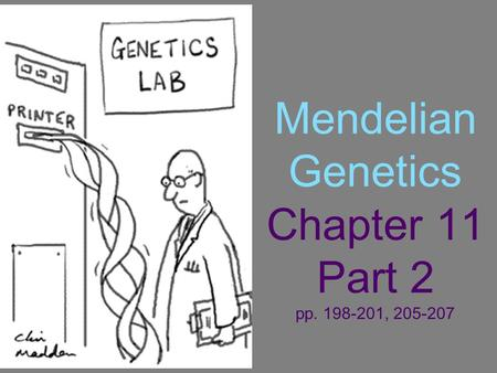 Mendelian Genetics Chapter 11 Part 2 pp. 198-201, 205-207.