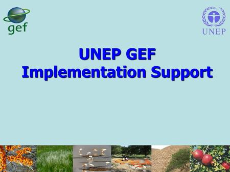 UNEP GEF Implementation Support. UNEP's Role in GEF The only Implementing Agency of the GEF whose core business is the environment; Supports strategic.