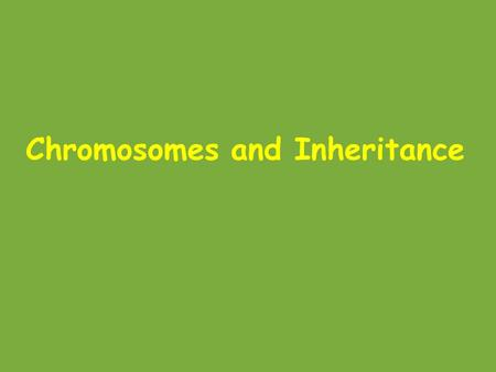 Chromosomes and Inheritance. Autosomes vs. sex chromosomes Autosomes = the pairs of chromosomes that are the same in males and females In humans, these.