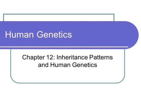 Chapter 12: Inheritance Patterns and Human Genetics