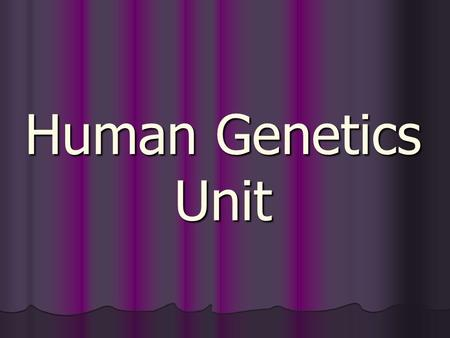 Human Genetics Unit. Creating Genetic Diversity How did you become so unique? 1) Sexual reproduction 2) Independent assortment of chromosomes (from mom.