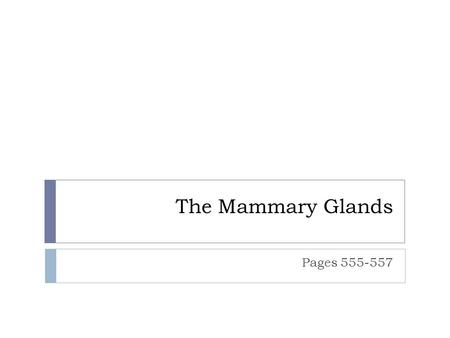 The Mammary Glands Pages 555-557. Mammary Glands © 2015 Pearson Education, Inc.  Modifies sweat glands  Present in both sexes; functional only in females.
