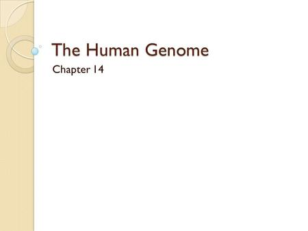 The Human Genome Chapter 14.