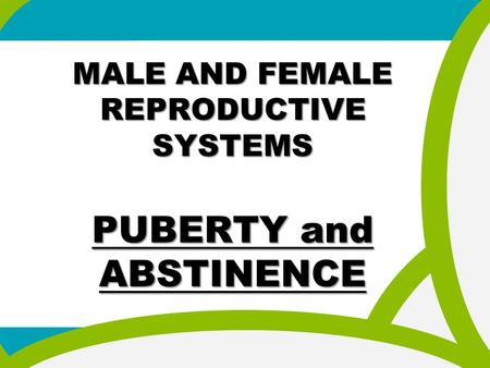 MALE AND FEMALE REPRODUCTIVE SYSTEMS PUBERTY and ABSTINENCE