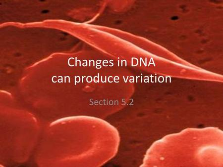 Changes in DNA can produce variation Section 5.2.