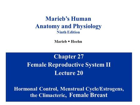 Anatomy and Physiology Female Reproductive System II
