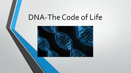 DNA-The Code of Life. What is DNA? DNA stands for deoxyribonucleic acid. DNA is a chemical that controls the activities of cells with coded instructions.