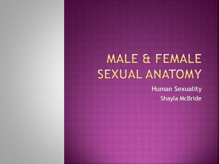 Male & female Sexual anatomy