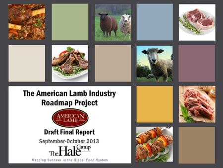Mapping Success in the Global Food System The American Lamb Industry Roadmap Project Draft Final Report September-October 2013.