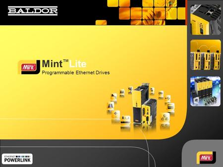 Mint ™ Lite Programmable Ethernet Drives. 22 Mint Lite - <strong>Powerful</strong> Programmable Drive Software Features  Mint is a rich, high-level language, which makes.