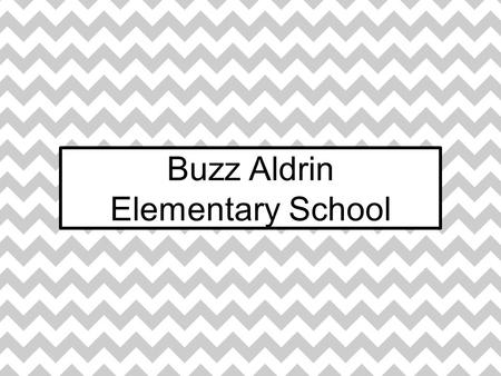 Buzz Aldrin Elementary School. Ethnic Background at Aldrin.