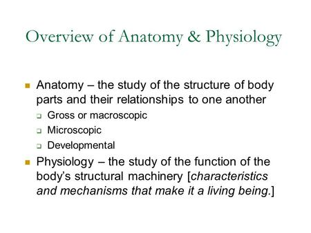 Overview of Anatomy & Physiology Anatomy – the study of the structure of body parts and their relationships to one another  Gross or macroscopic  Microscopic.