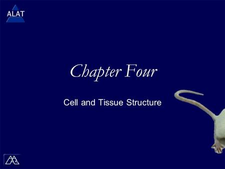 "Chapter Four Cell and Tissue Structure.  If viewing this in PowerPoint, use the icon to run the show (bottom left of screen).  Mac users go to ""Slide."