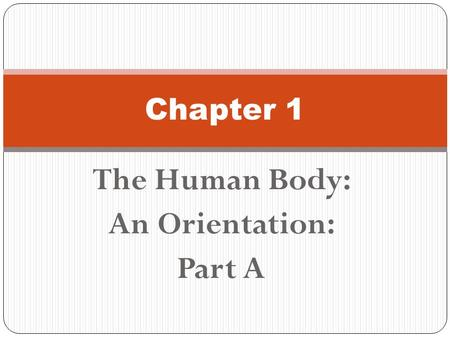 The Human Body: An Orientation: Part A