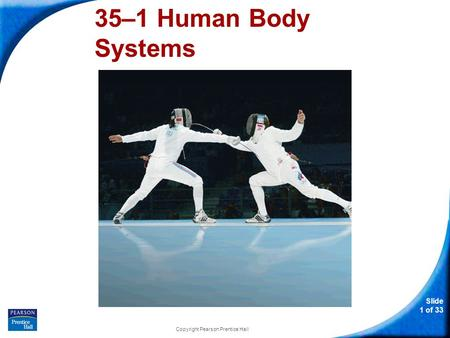 Slide 1 of 33 Copyright Pearson Prentice Hall 35–1 Human Body Systems.