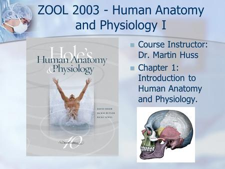 ZOOL 2003 - Human <strong>Anatomy</strong> <strong>and</strong> <strong>Physiology</strong> I Course Instructor: Dr. Martin Huss Chapter 1: Introduction to Human <strong>Anatomy</strong> <strong>and</strong> <strong>Physiology</strong>.