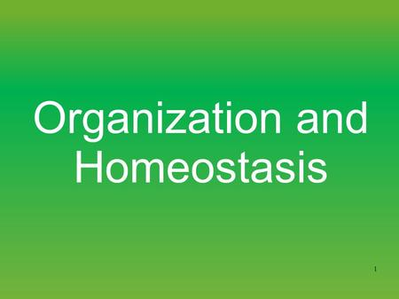 1 Organization and Homeostasis. 2 Levels of biological organization Chemical Cellular Tissue Organs System Level Organismic Level.