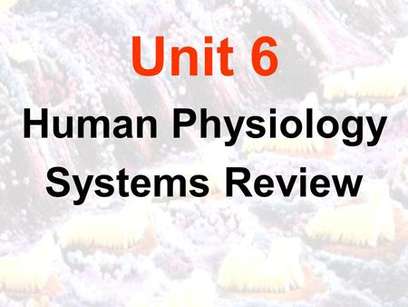 Unit 6 Human Physiology Systems Review. CALIFORNIA CONTENT STANDARDS: Physiology BI9. As a result of the coordinated structures and functions of organ.