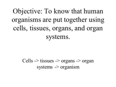 Objective: To know that human organisms are put together using cells, tissues, organs, and organ systems. Cells -> tissues -> organs -> organ systems ->