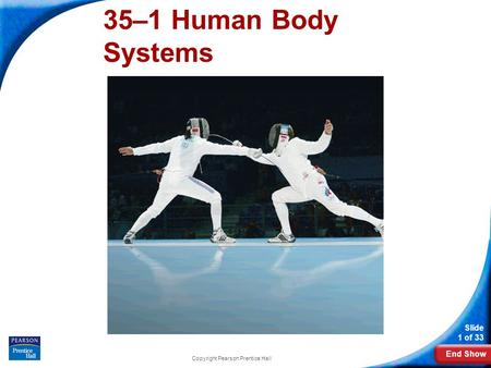 End Show Slide 1 of 33 Copyright Pearson Prentice Hall 35–1 Human Body Systems.