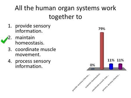 All the human organ systems work together to 1.provide sensory information. 2.maintain homeostasis. 3.coordinate muscle movement. 4.process sensory information.