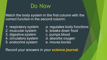 Do Now Match the body system in the first column with the correct function in the second column: 1. respiratory system 	a. regulates body functions 2.