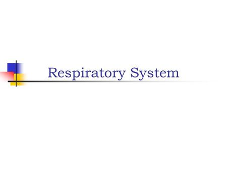 Respiratory System. Main functions: Provide oxygen to cells Eliminate carbon dioxide Works closely with cardiovascular system to accomplish gas exchange.