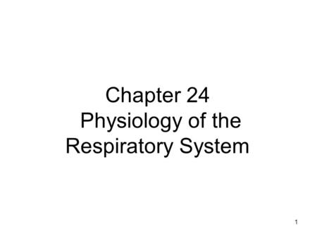 1 Chapter 24 Physiology of the Respiratory System.