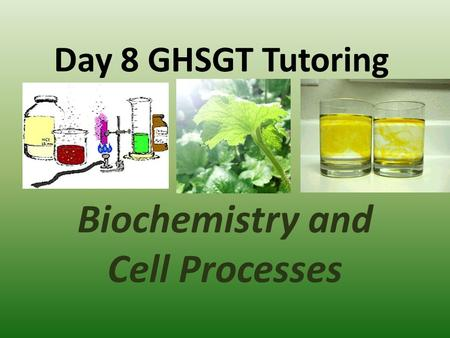 Day 8 GHSGT Tutoring Biochemistry and Cell Processes.