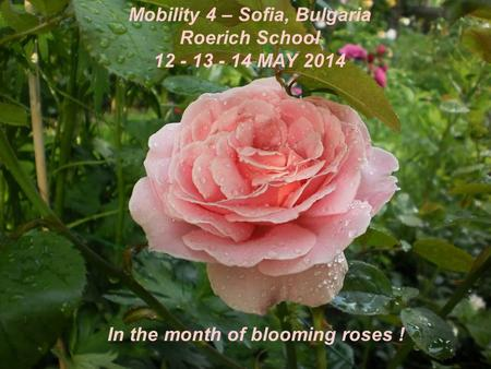 Mobility 4 – Sofia, Bulgaria Roerich School 12 - 13 - 14 MAY 2014 In the month of blooming roses !