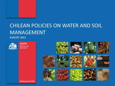 Oficina de Estudios y Políticas Agrarias www.odepa.cl CHILEAN POLICIES ON WATER AND SOIL MANAGEMENT AUGUST 2012.