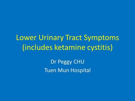 Lower Urinary Tract Symptoms (includes ketamine cystitis) Dr Peggy CHU Tuen Mun Hospital.