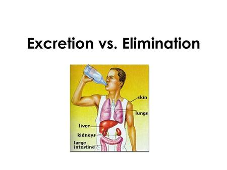 Excretion vs. Elimination. Your body makes several kinds of waste, which fall into two groups: –Undigested solid wastes –Wastes made by cells.