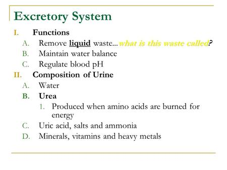 Excretory System I. Functions whatis this waste called A. Remove liquid waste...what is this waste called? B. Maintain water balance C. Regulate blood.