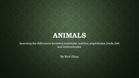 ANIMALS Learning the difference between mammals, reptiles, amphibians, birds, fish and invertebrates. By Nick Eling.